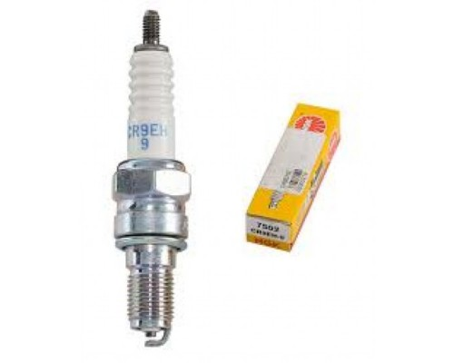 Свічка запалювання NGK 7502 / CR9EH-9